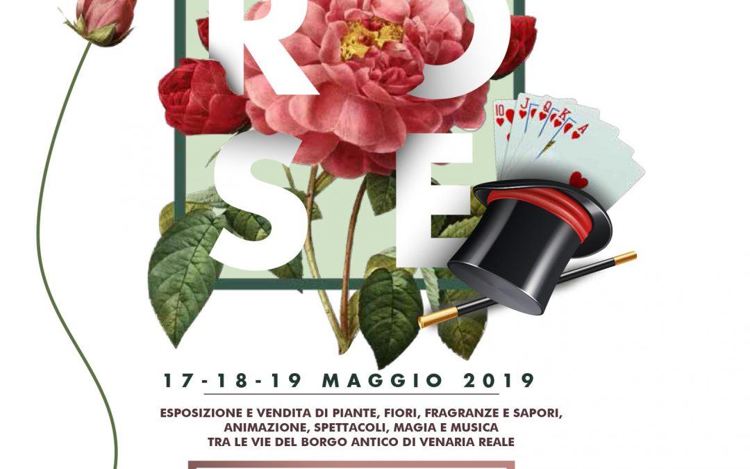 17^ edizione della Festa delle Rose a Venaria Reale